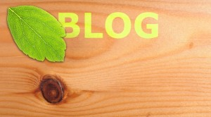 4 Reasons Business Blogging is Essential
